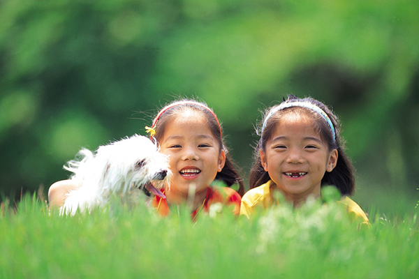 How Do Canines Present Affection to People?  How Do Canines Present Affection to People? 2 girls with a white dog in grass
