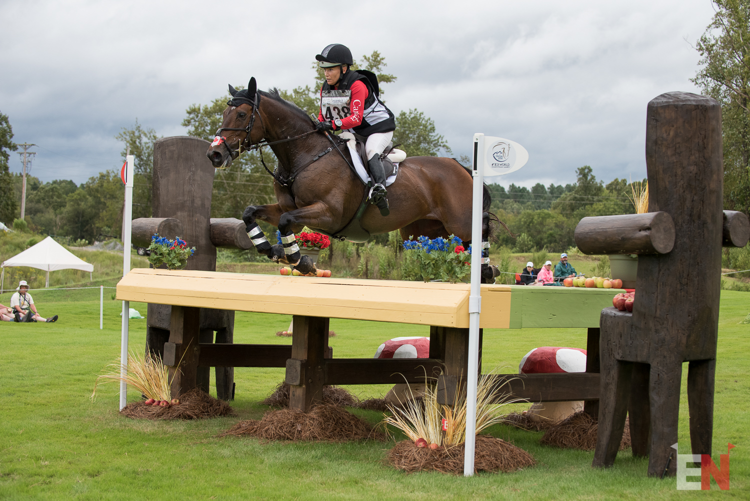 Equestrian Canada Proclaims 2019 Excessive Efficiency Squads  Equestrian Canada Proclaims 2019 Excessive Efficiency Squads Hawley Bennett Awad and Jollybo1