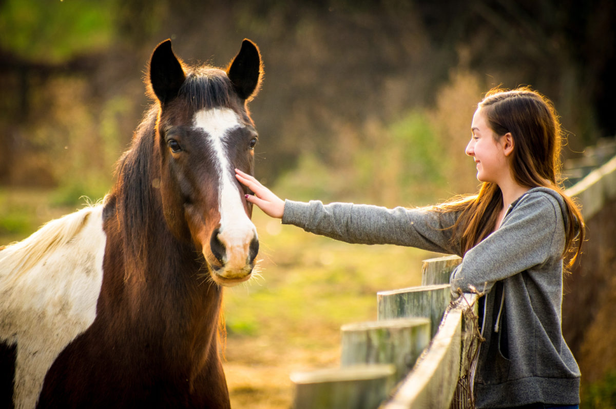 5 Indicators That You Could Be in an Unhealthy Relationship with Your Horse  5 Indicators That You Could Be in an Unhealthy Relationship with Your Horse 23750131582 9c956ae278 k 1200x798