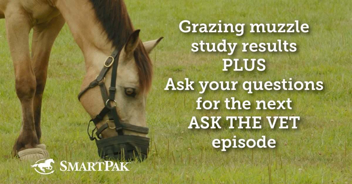 Grazing Muzzle research! + Ask your questions for the following Ask the Vet episode!  Grazing Muzzle research! + Ask your questions for the following Ask the Vet episode! Grazing Muzzle study Ask your questions for the next Ask the Vet episode thumb 1200x628
