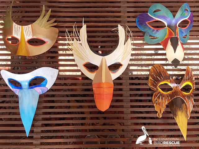 Your Bird Mask Awaits You At The Night-Heron Masquerade Party On Oct 26th  Your Bird Mask Awaits You At The Night-Heron Masquerade Party On Oct 26th Masks For Bird Rescue Masquearde Party