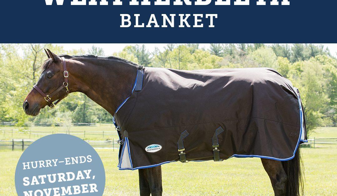 Enter Our Big Blanket Giveaway: Week 5  Enter Our Big Blanket Giveaway: Week 5 11