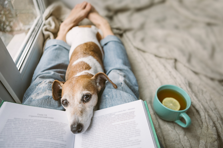 four Books to Add to Your Studying Listing  four Books to Add to Your Studying Listing GettyImages 1132975333