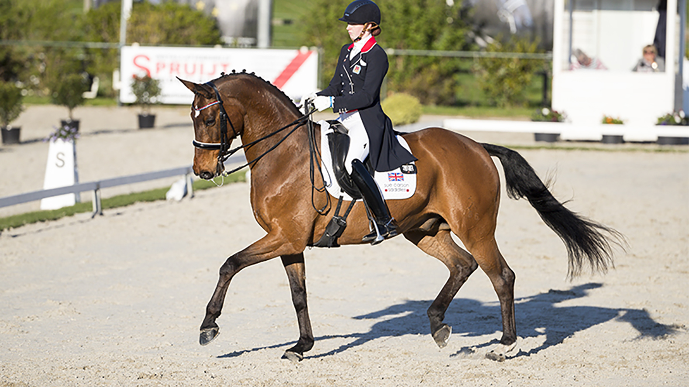 Joanna Thurman-Baker's dressage weblog: I write from the guts — please be good  Joanna Thurman-Baker's dressage weblog: I write from the guts — please be good Unknown 10