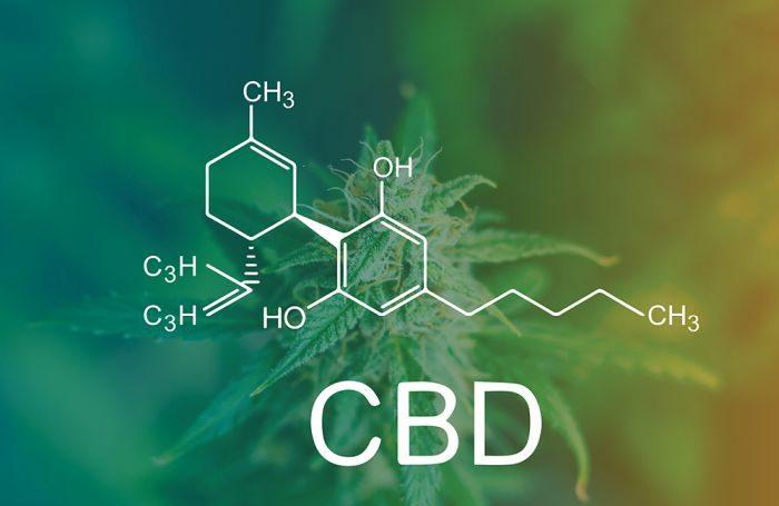 Pet hemp complement CBD ranges differ; four with heavy metals  Pet hemp complement CBD ranges differ; four with heavy metals cbd chemical makeup