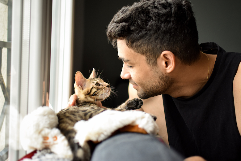 Which Ailments Can I Catch From My Cat?  Which Ailments Can I Catch From My Cat? GettyImages 1192677747
