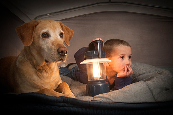 Is Your Canine Fearful of Thunder? 6 Ideas for Soothing Him  Is Your Canine Fearful of Thunder? 6 Ideas for Soothing Him Scared dog hiding out with boy