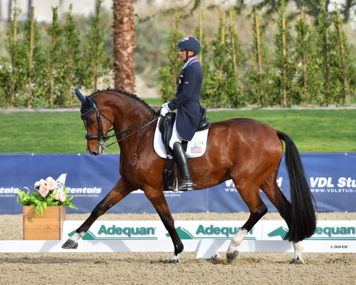Steffen Peters Logged a Excellent FEI Document in 2020. Right here's How He Did It.  Steffen Peters Logged a Excellent FEI Document in 2020. Right here's How He Did It. unnamed 67 1200x960