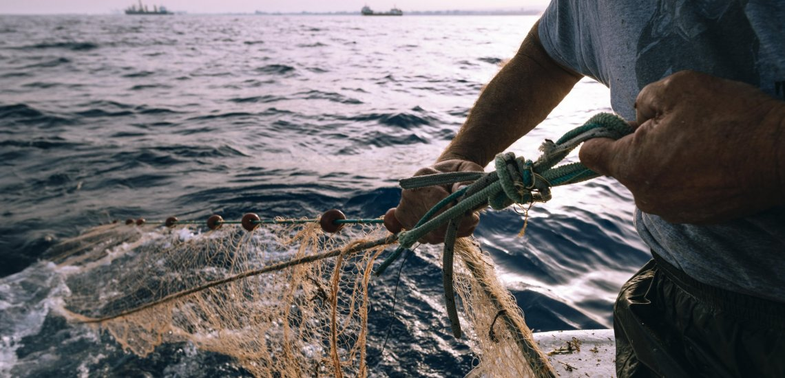 1000's of sharks and sea turtles fall sufferer to bycatch in Cyprus yearly  1000's of sharks and sea turtles fall sufferer to bycatch in Cyprus yearly fishermen 011 min